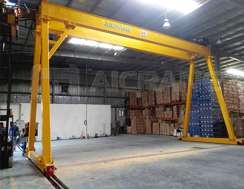 Double Girder Indoor Crane for Sale